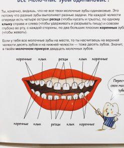 Зубная книга
